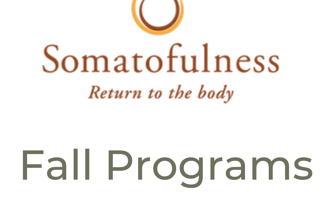 Somatofulness Fall Programs